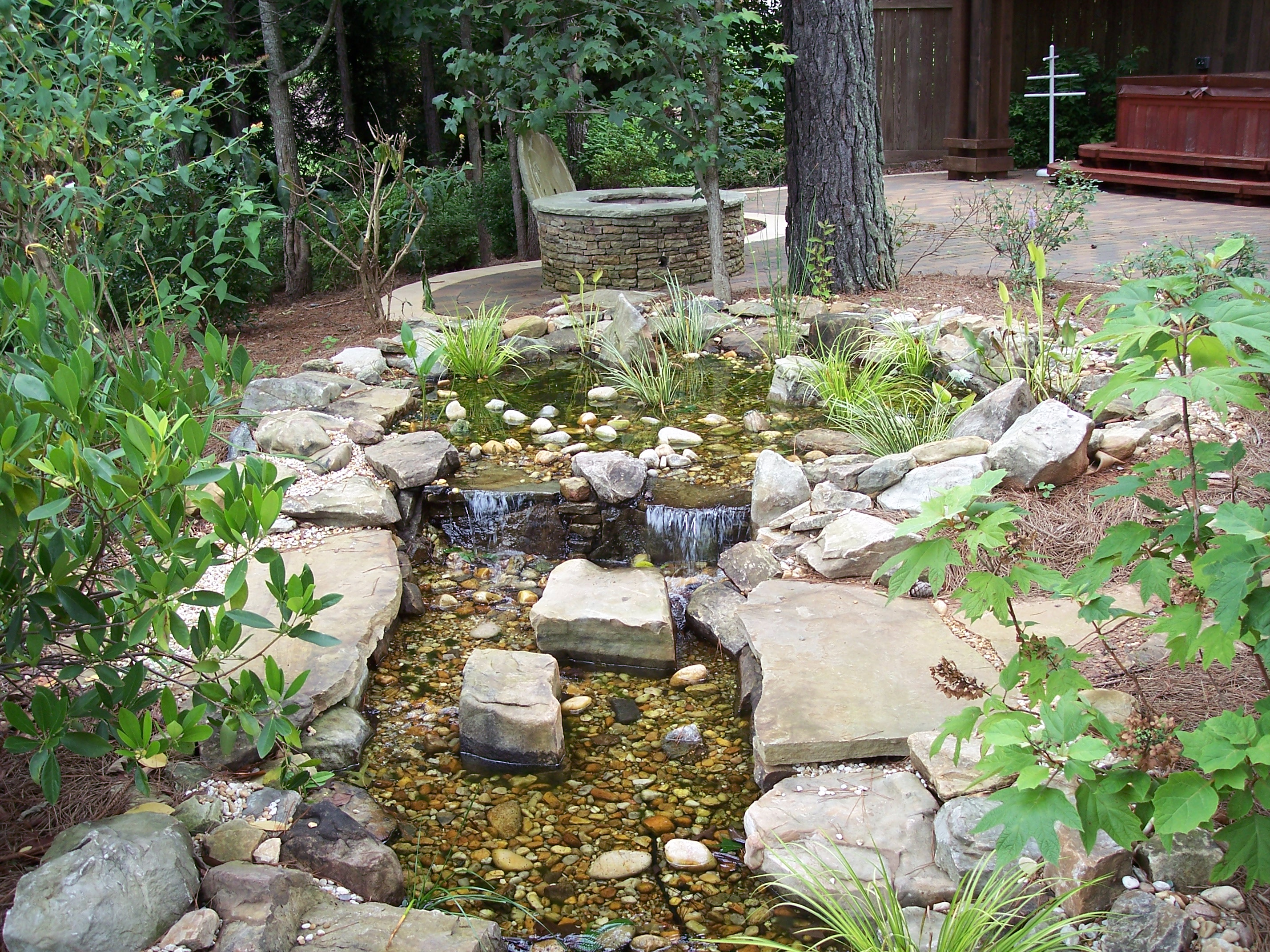Bog filtration for Plants for pond filtration